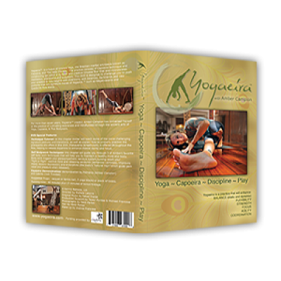 Printed Outer DVD Cover - Wrap<br>1 Sided, 4/0